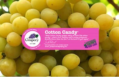 Freestone Produce | Whole Sale Produce Calgary